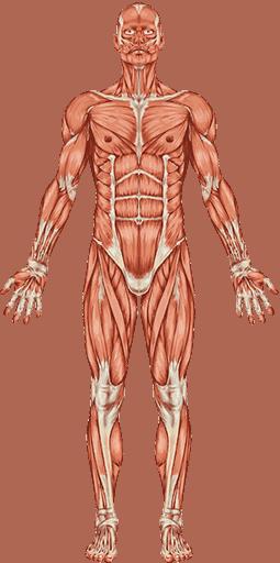 rehabilitacja bólu