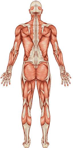 rehabilitacja leczenie bólu
