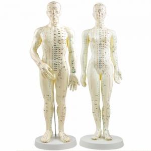 fizioterapia holistyczna