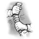 nastawianie kręgosłupa warszawa