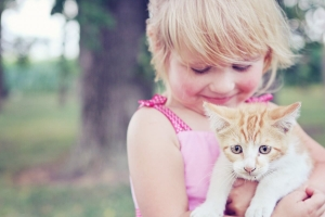kiedy kupić dziecku kota?
